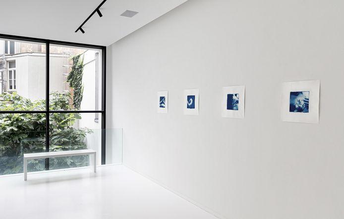 Belgisch-Nederlandse Alessandra Ruyten stelt in de galerij blauwdrukken ofwel cyanotypes voor.