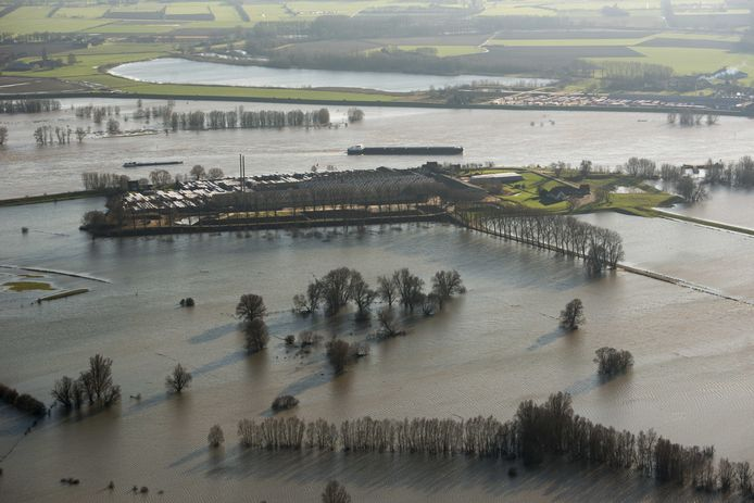 Hoog water in de Rijn tussen Millingen en Lobith.