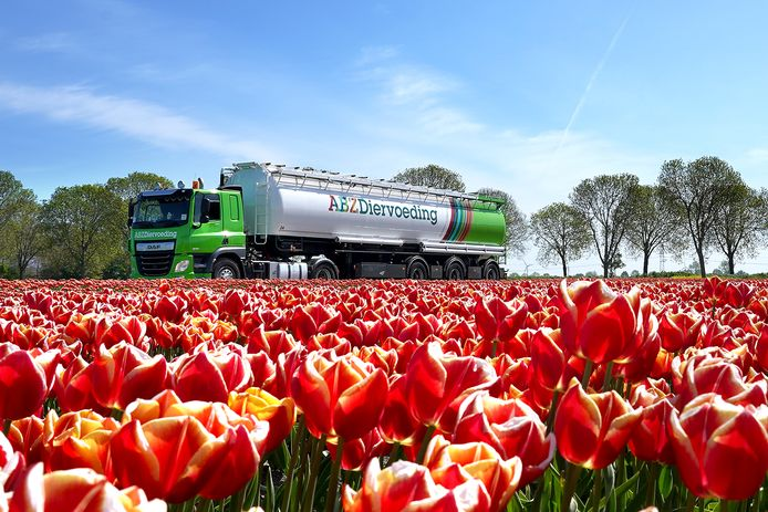 ABZ Diervoeding rijdt voor transport van zijn diervoeders met bulkauto's van DAF.