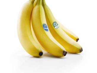 Chiquita Banana Company opgelicht voor 500.000 euro, kwartet krijgt celstraffen tot 20 maanden