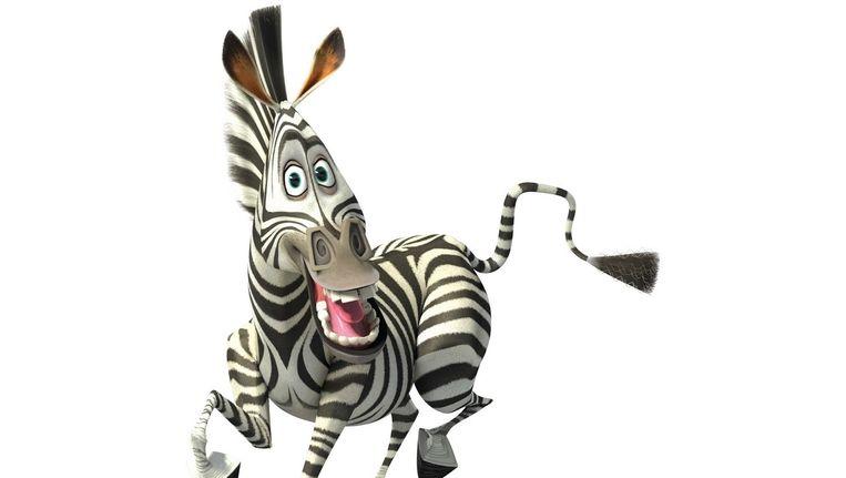 Zebra's met ontsnappingsdrang: in Vilvoorde leverde deze Marty uit 'Madagascar' deze week inspiratie voor het nieuws. Beeld kos