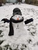 Op heel wat plaatsen werden sneeuwpoppen gemaakt.