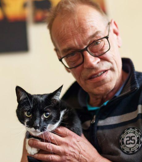 Jip lijkt niet de eerste kat die werd beschoten in Moerdijk: 'Dit is geen rancune, maar tijdverdrijf'