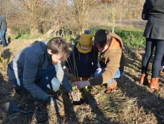 Kleine Hasselaars mogen op 14 november boompje planten in Geboortebos Tuilt