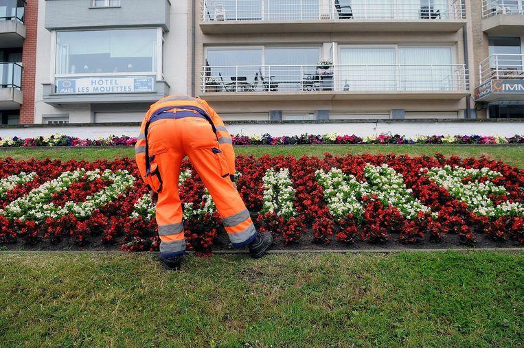 Foto ter illustratie: Tuinklussen is een vaak voorkomende gemeenschapsdienst. Vaak zijn het taken met lage waardering.