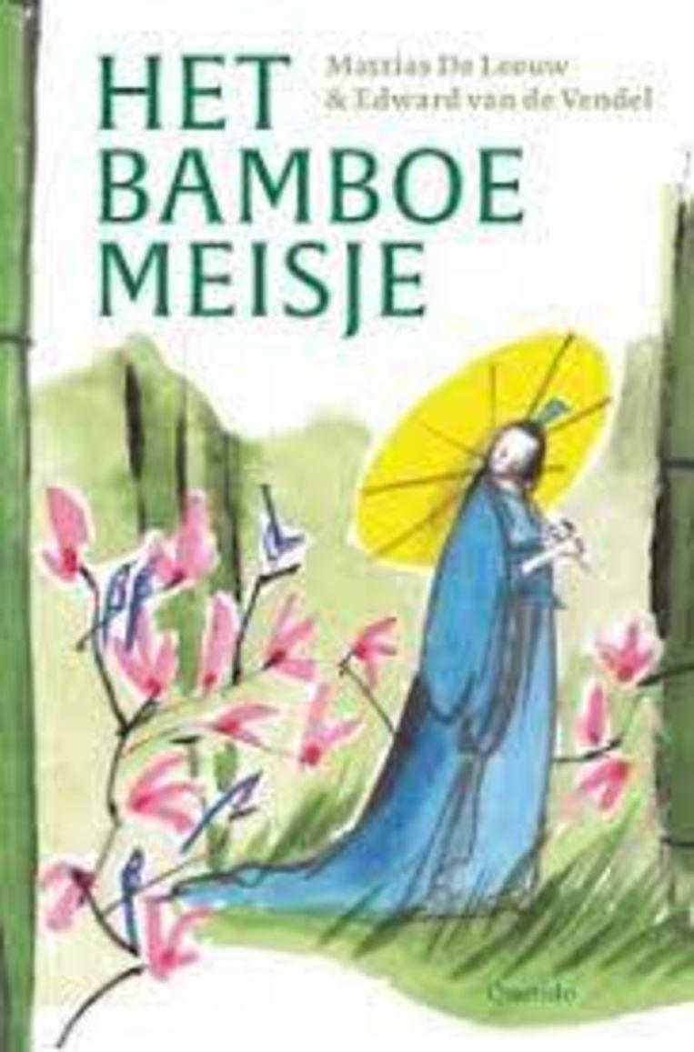 Edward van de Vendel & Mattias De Leeuw, 'Het bamboemeisje', Querido, 256 p., 22,50 euro, 10+. Beeld rv