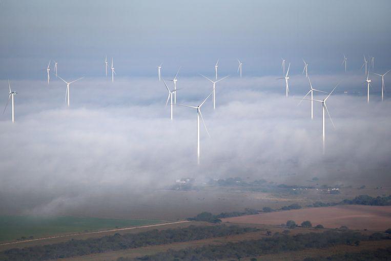 Archiefbeeld: windmolens nabij de Amerikaans-Mexicaanse grens.  Beeld Getty Images