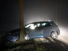 Automobilist botst tegen boom in Staphorst