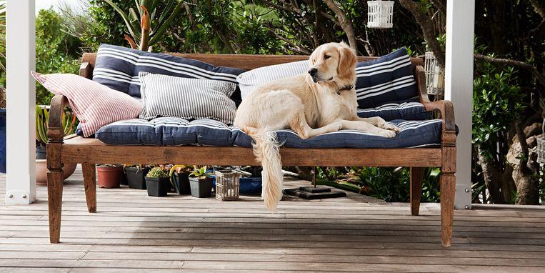 hond-houten-terras.jpg