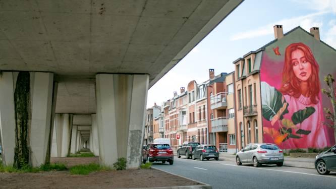 """'Project 33' voor grijze spoorbrug: """"Aantrekkelijke toegangspoort van maken voor Sint-Niklaas"""""""