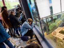 Corona zorgde voor een domper voor musea en attracties, hoop gevestigd op 2021