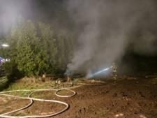 Dinxperloërs schrikken wakker van brand in coniferenhaag