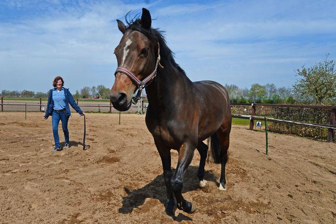"""Bianca ten Voorde heeft een praktijk NLP en Paardencoaching in Haaksbergen. """"Een paard trapt niet in mooie praatjes. Een paard prikt daar meteen doorheen en voelt zich daardoor niet bij jou op z'n gemak en loopt vervolgens niet met jou mee."""""""