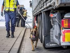 Leefbaar wil stroom illegalen in Hoek van Holland indammen