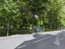 Menacés par la STIB, les arbres du parc Elisabeth sont finalement sauvés