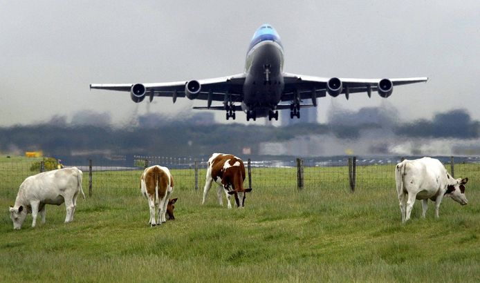 Geen vervoermiddel zo slecht voor het milieu als het vliegtuig. Hun schuldgevoel over de grote CO2-uitstoot kunnen passagiers afkopen door bomen te laten planten. Maar zet deze 'moderne aflaat' zoden aan de dijk? Archieffoto Hans van Weel