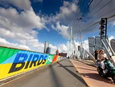 Gemist? Fraudeurs bieden valse startbewijzen voor Rotterdam Marathon aan en de stad aangekleed voor songfestival