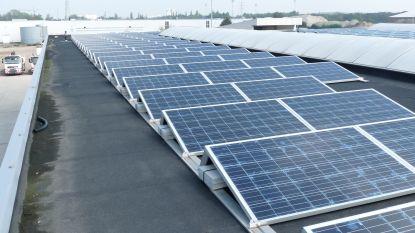 Lievegem legt zonnepanelen op gemeentegebouwen: burger kan mee investeren