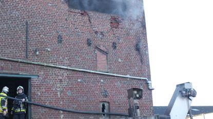 Brandweer rukt met 23 manschappen uit voor… brandende cichorei-ast
