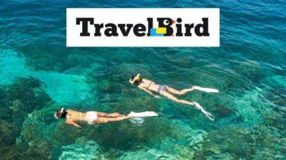 Duizenden gedupeerden TravelBird wachten na twee maanden nog steeds op hun geld