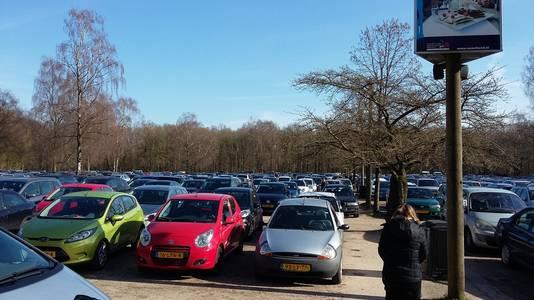 Drukte op de parkeerplaats van Ouwehands in Rhenen.