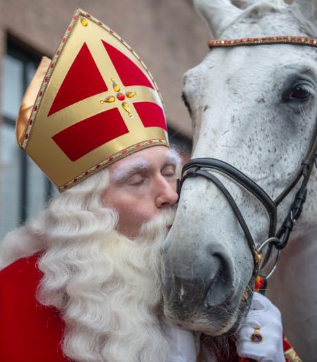 Koppige paarden en een struikelende sint: BN DeStem zoekt grappige sinterklaasverhalen