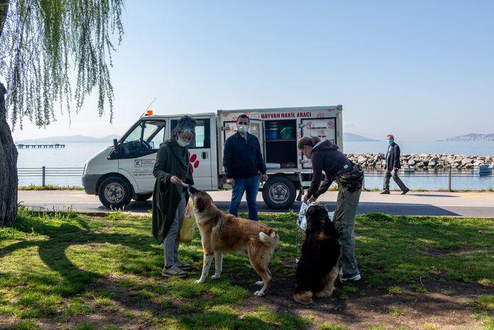 Evren Collison (l) deelt dierenvoer van de gemeente uit aan straathonden in Istanboel.