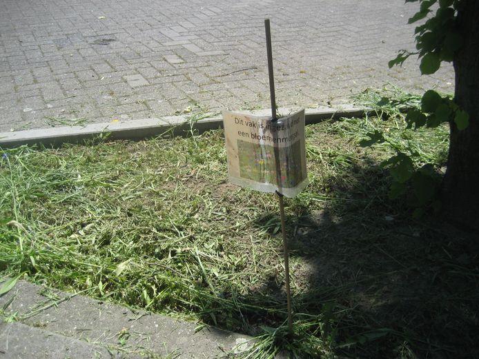 Op een bordje staat nochtans duidelijk dat de perkjes werden ingezaaid met een bloemenmengsel.