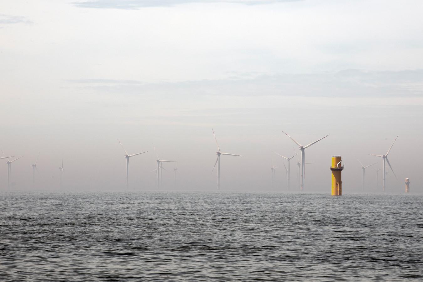 Windpark Borssele