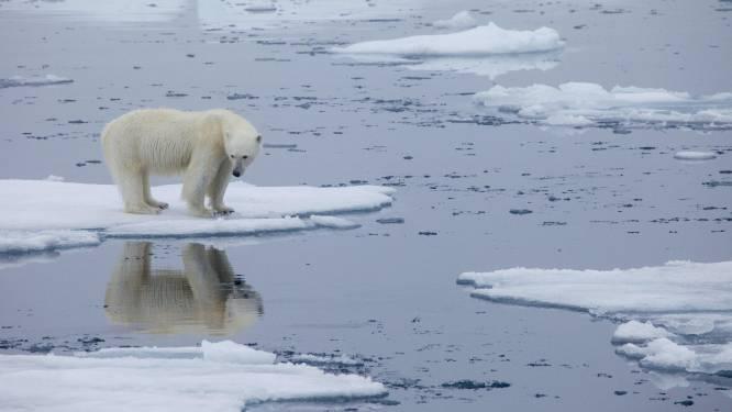 Il reste huit ans à l'Humanité pour diviser les émissions de gaz à effet de serre par deux