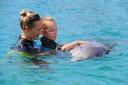 Bij dolfijnondersteunde therapie werken kinderen met een beperking nauw samen met de dolfijnen in het water.