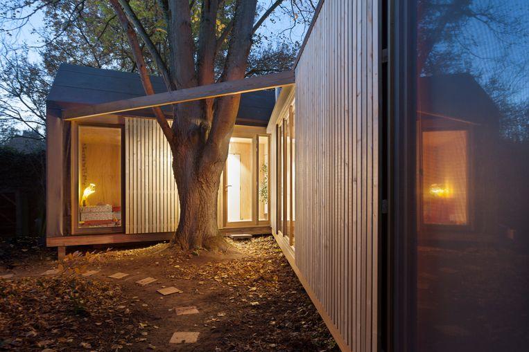 Rondom de boom gaat Rémi een houten terras aanleggen zodat de twee delen van het huis met elkaar worden verbonden.  Beeld Marie-Noëlle Dailly