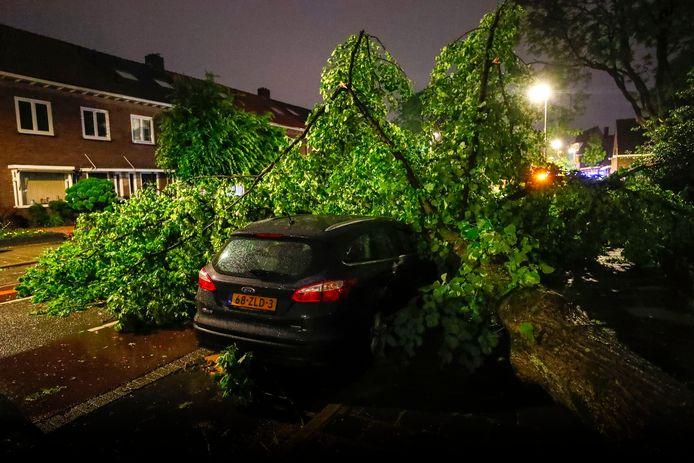 Een boom is op een auto gevallen in Eindhoven.