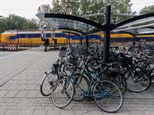 Gezocht: weeshuis voor fietsen van stations Brummen en Voorst-Empe