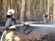 Natuur brandt fors, maar brandweer kan het aan