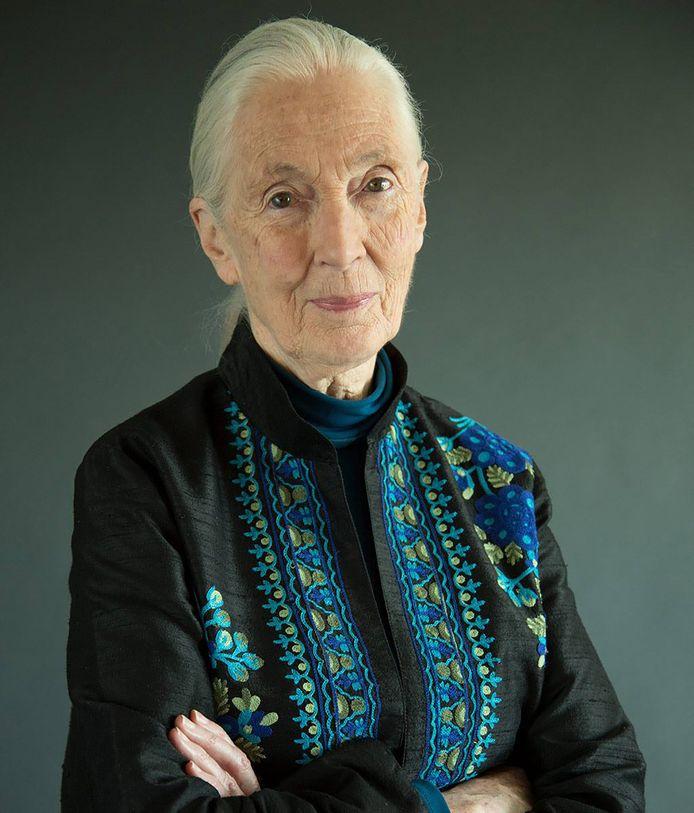 Jane Goodall Foto: Vulture