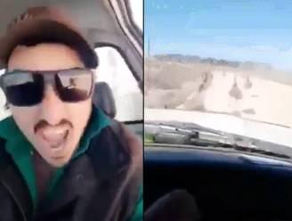 Dierenbeul maait opzettelijk 13 emoes van de weg: 20-jarige verdachte opgepakt