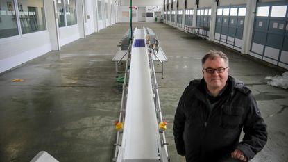 Machine sorteert platvis in vismijn