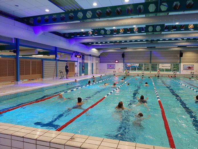 De Molen Hey in Schijndel is ook komende herfstvakantie weer het decor voor de zwemvierdaagse.