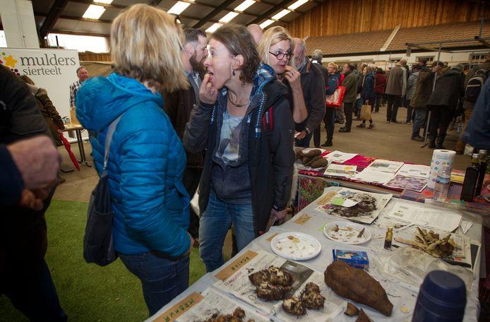Groenmoesmarkt in Sint-Oedenrode