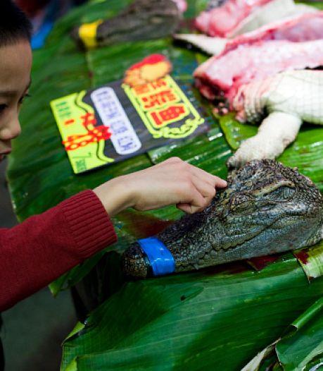 Een kijkje op de 'culinaire horrormarkt' van Wuhan