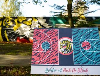 Park De Blieck krijgt kleurrijk hypecourt 'Toigerploin'