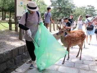 Japans park wil met eetbare zakken herten redden van dood door inslikken plastic