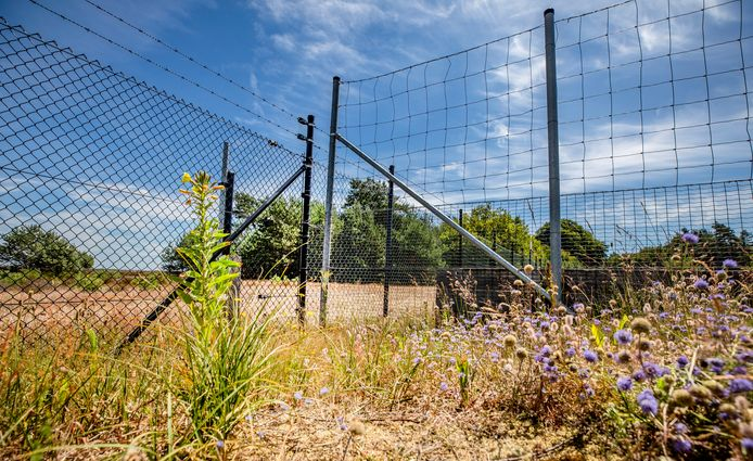 Een hek op een wildpassage tussen Nationaal Park De Hoge Veluwe en het Deelerwoud tussen Otterlo en Arnhem.