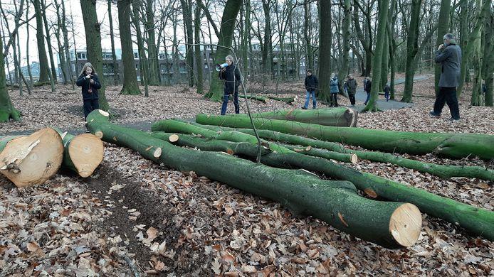 De 'bomenwakewandeling' van Behoud Bomen Arnhem afgelopen zondag. De wandelaars passeren enkele omgezaagde bomen in Park Klarenbeek. Met megafoon: Mark Bosch.