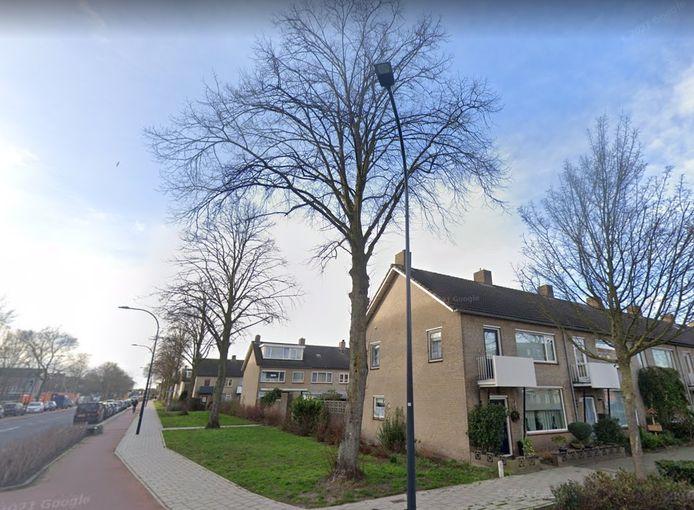 De rij lindes (midden) begint op de hoek Van Lovenlaan/Groen van Prinstererlaan in Waalwijk.