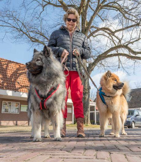 Speciaal voor de honden airconditioning genomen: 'Anders is het 's zomers te warm voor ze'