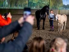 Betraande ogen bij afscheid van trouwe rijpaarden in Gouda: 'Ik kan je niet laten gaan'