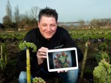 Zelf koken als in een restaurant? Kookboek van Apeldoornse chef-koks om horeca te steunen