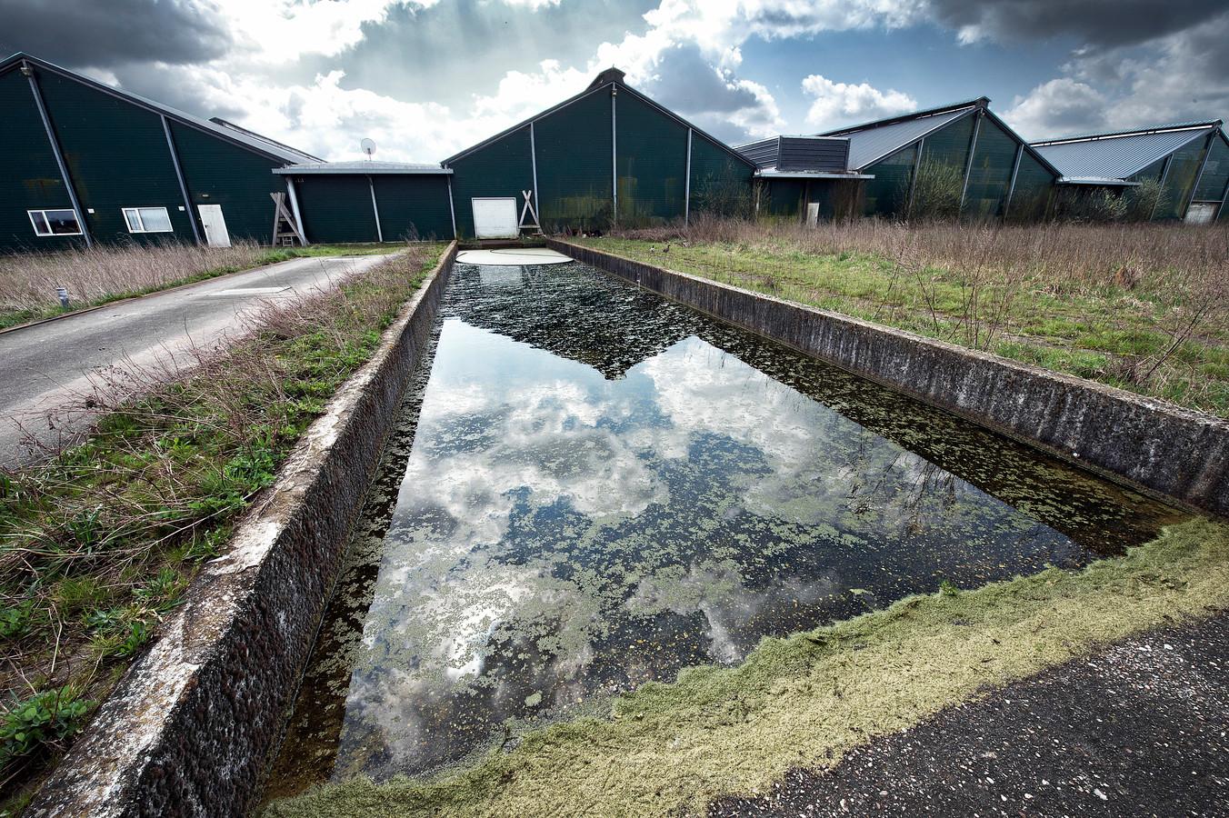 De kippenboerderij in Groesbeek die is aangekocht door Dutch Dairy Genetics, het bedrijf van Kees Koolen.